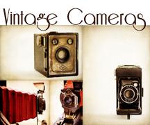 Vintage Cameras Gallery Coming Soon!