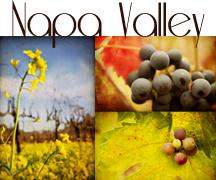 Napa Valley Gallery